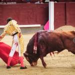 Gahirupe Alberto Lamelas (9)