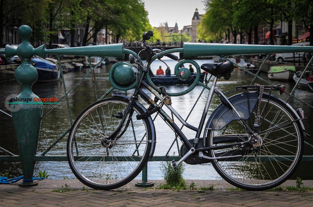 Gahirupe Amsterdam 2013