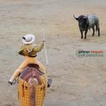 Gahirupe Detalle taurino (1)