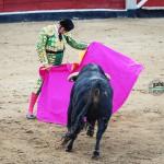 Gahirupe Morante de la Puebla 2012 (2)