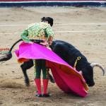 Gahirupe Morante de la Puebla 2012 3