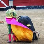 Gahirupe Morante de la Puebla 2012 (4)