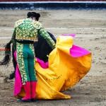 Gahirupe Morante de la Puebla 2012 (5)