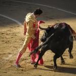 Gahirupe El Cid 2014 (3)