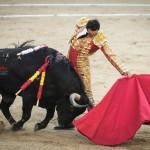 Gahirupe El Cid 2014 (7)