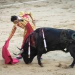 Gahirupe El Cid 2014 (8)