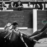Gahirupe Guerrita Chico 2014 (3)