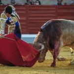 Gahirupe Tomas Campos 2013 (18)