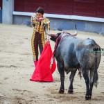 Gahirupe Fernando Robleño 2012 (2)