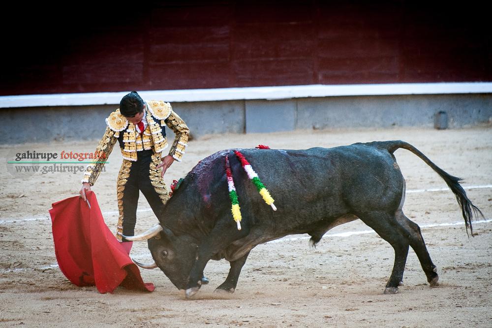 Gahirupe Diego Urdiales 2015 (4)