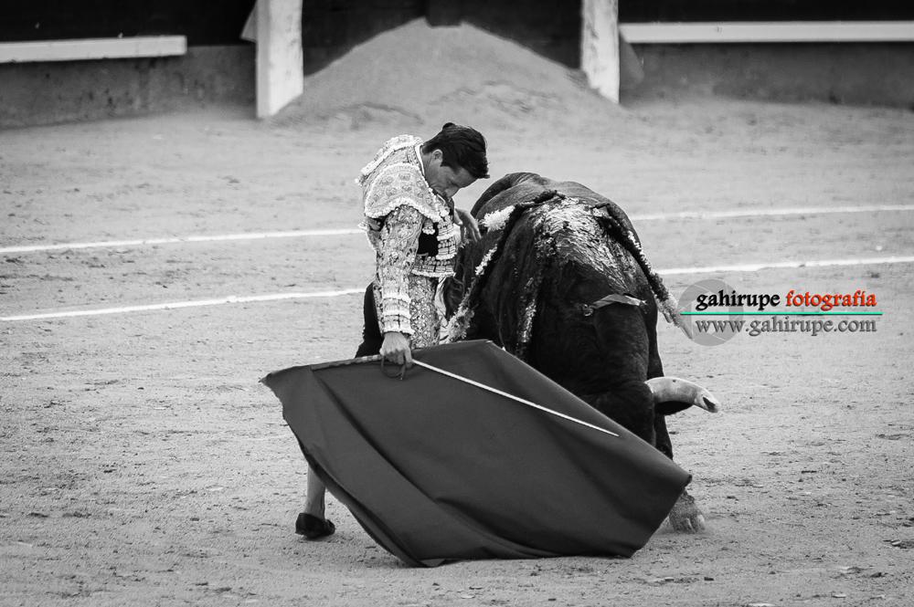 Gahirupe Diego Urdiales 2015 (7)