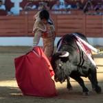 Gahirupe Sebastian Castella Torrejon 2015 (10)