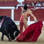 Gahirupe Sebastian Castella Torrejon 2015 (13)