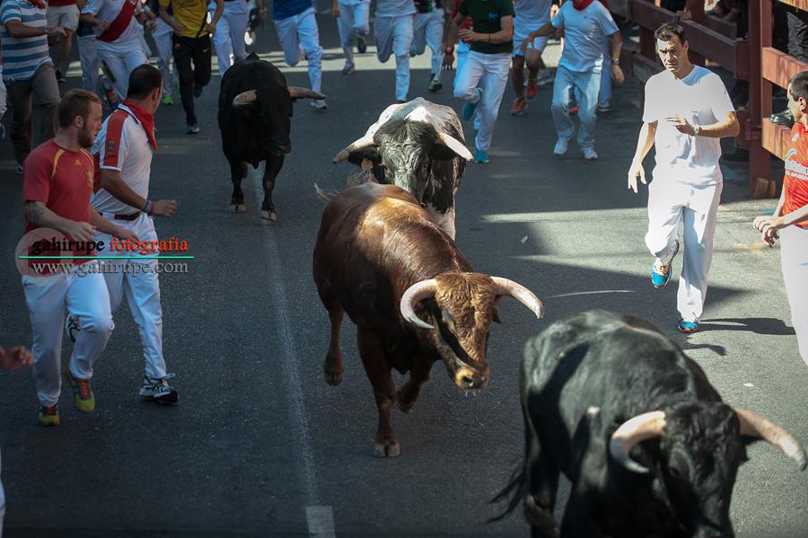 Gahirupe Sanse 2015 Segundo Encierro (4)