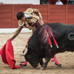 Gahirupe Colmenar Viejo 2015 Tercera (8)