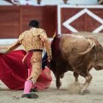 Gahirupe Colmenar Viejo 2015 novillada (7)