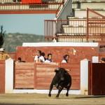 Gahirupe Colmenar Viejo 2015 novillada (9)