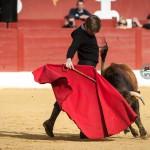 Gahirupe Tentadero Torrejon 2015 (15)