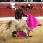 Gahirupe Tentadero Torrejon 2015 (25)