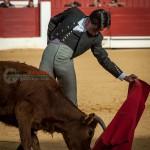 Gahirupe Tentadero Torrejon 2015 (32)
