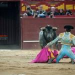 Gahirupe Valdemorillo 2016 Borja Jimenez Lama de Gongora Espada Ana Romero (21)