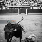 Gahirupe 24Mayo San Isidro 2016 (14)