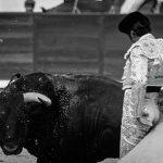 Gahirupe 24Mayo San Isidro 2016 (9)