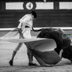 Gahirupe Catorceava San Isidro 2016 (17)