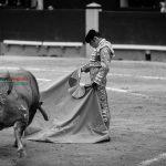 Gahirupe Decima San Isidro 2016 (11)