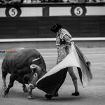 Gahirupe Decima San Isidro 2016 (15)
