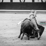 Gahirupe Decima San Isidro 2016 (26)