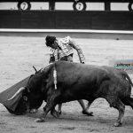 Gahirupe Decima San Isidro 2016 (31)