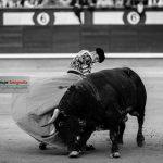 Gahirupe Decima San Isidro 2016 (6)
