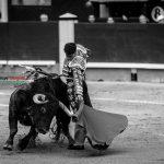 Gahirupe Decima San Isidro 2016 (9)