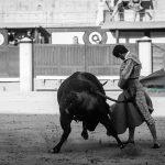 Gahirupe Aitor Dario El Gallo 2016 (2)