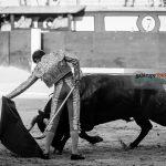Gahirupe Aitor Dario El Gallo 2016 (5)