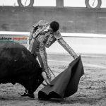 Gahirupe Aitor Dario El Gallo 2016 (6)