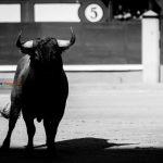 Gahirupe Arauz de Robles 2016 (2)