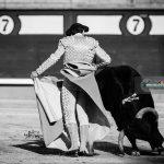Gahirupe Gallo de Cordoba 2016 (3)