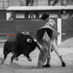 Gahirupe Miguel Maestro 2016 (3)