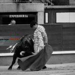 Gahirupe Miguel Maestro 2016 (6)