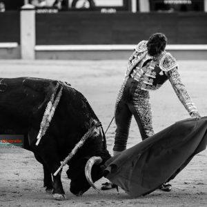 gahirupe-eduardo-gallo-2016_-7
