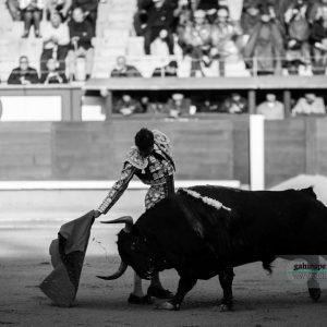 Gahirupe Eugenio de Mora 2017