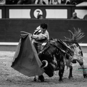 Gahirupe Morenito de Aranda 2017