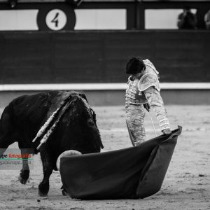 Gahirupe Sebastian Castella 2017