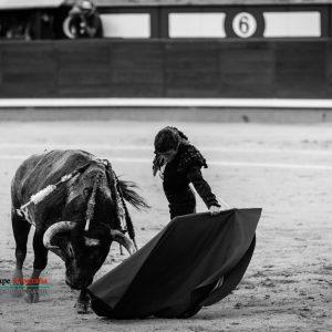 gahirupe_fernando_robleno_2017- (8)