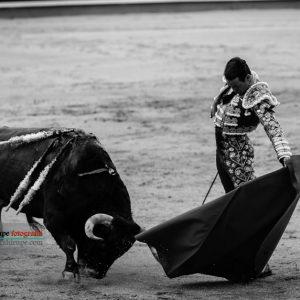 gahirupe_jose_maria_manzanares_madrid_2017- (5)