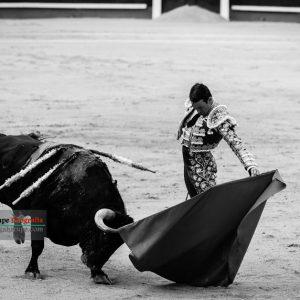 gahirupe_jose_maria_manzanares_madrid_2017- (9)