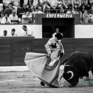 gahirupe_alejandro_talavante_colmenar_2017- (4)