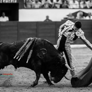 gahirupe_alejandro_talavante_colmenar_2017- (8)
